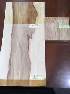 マロニエのサンプル(320×320)